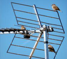 Antennihuolto